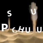 Pschuuu - Affiche du spectacle